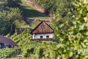 Urlaub Kellerstöckl Steiermark